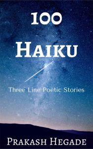 100-haiku-lr
